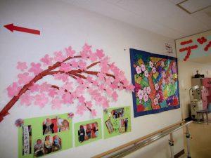 壁に咲いた桜